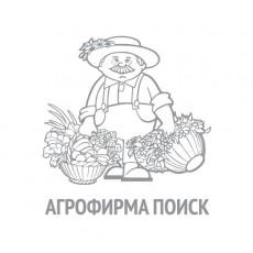 Салат Витаминный(А) (ЧБ) (увеличенный размер) 1гр.