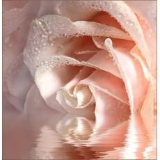 Декоративное панно VIP Кремовая роза 196х201 (6 листов)
