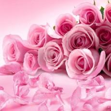 Декоративное панно VIP Розовые розы 196х260 (8 листов)