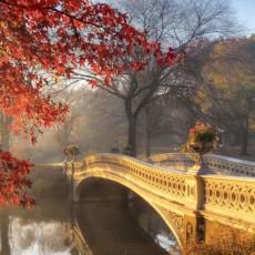Декоративное панно Осенний сад DECOCODE 13-0294-PE (130х250см)