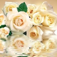 Декоративное панно VIP Белые розы 294х260 (12л)