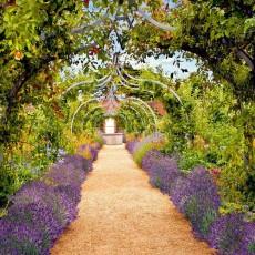 Декоративное панно VIP Дорожка в саду 392х260 (16л)