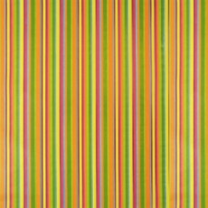 Пленка  HONGDA 8289 0,45х8м полоса разноцветная